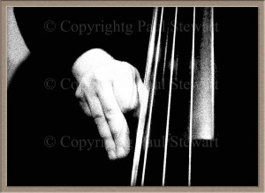 The hand of Vincenzo LoGreco, jazz bass player, Milan © Paul Stewart